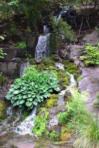 Crystal Springs Rhododendron Garden, Portland OR