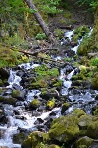 Starvation Creek, Columbia River Gorge, Oregon