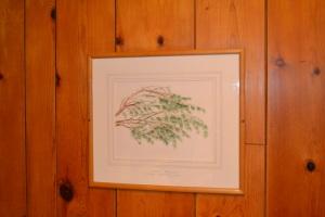 Timberline Lodge, Mount Hood, OR