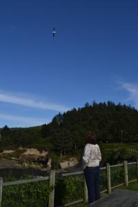 Boiler Bay, OR