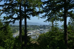 Brookings Harbor from Azalea Park, Brookings OR
