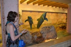 Atlantis Paradise Resort, Nassau Bahamas