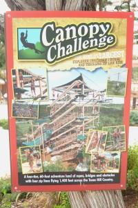 Canopy Challenge, Natural Bridge Caverns, San Antonio TX
