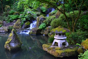 Japanese Tea Garden, Portland OR