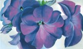 Petunia by Georgia O'Keefe