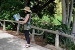 Huntington Gardens, San Marino CA
