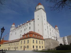 2b-castle-tor-7