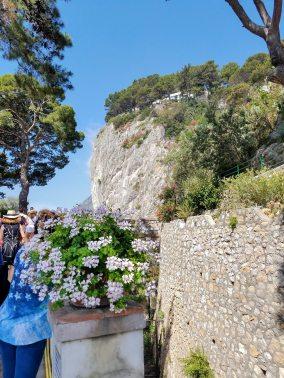 Capri, Sorrento, Pompeii-12