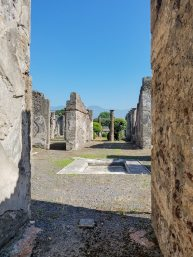 Capri, Sorrento, Pompeii-37