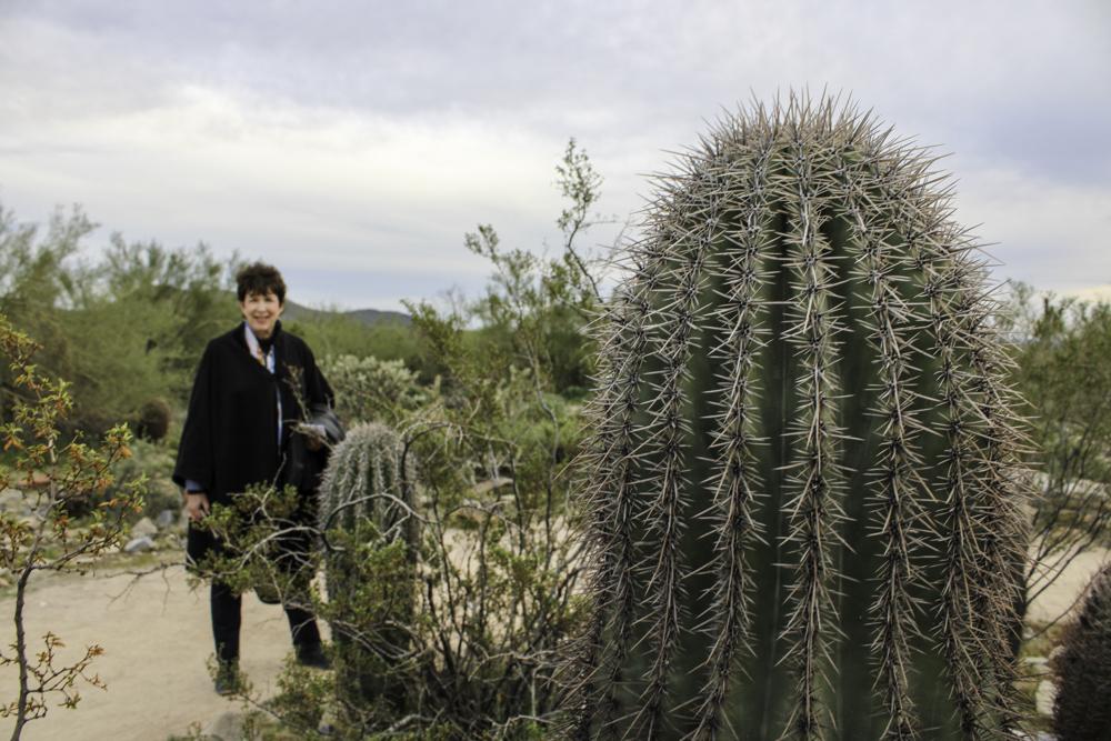 Desert Preserve (19)