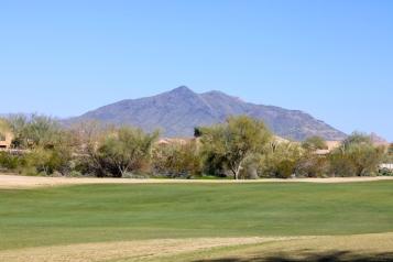 Golf Course (7)